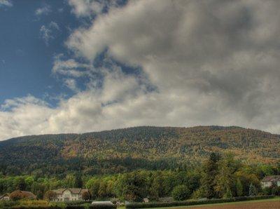 forêt de la montagne de Boudry.jpg