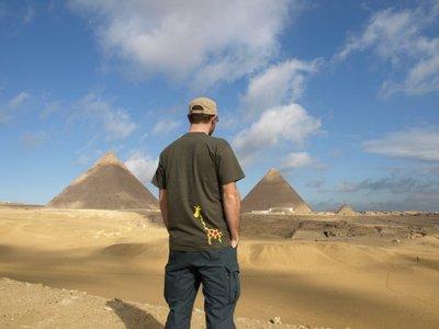 la-girafe_et_les_pyramides_de_gizeh_en_egypte.jpg
