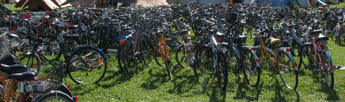 parc à vélo sauvage.jpg