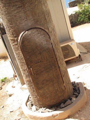la porte dans le tronc du palmier.jpg