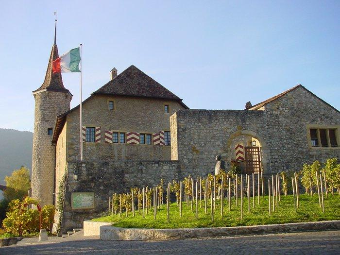 Château de Boudry et vignes.JPG
