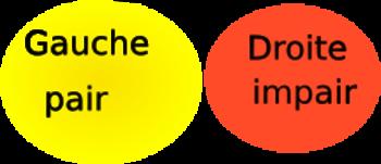 ma représentation de la gauche et la droite en couleur.png