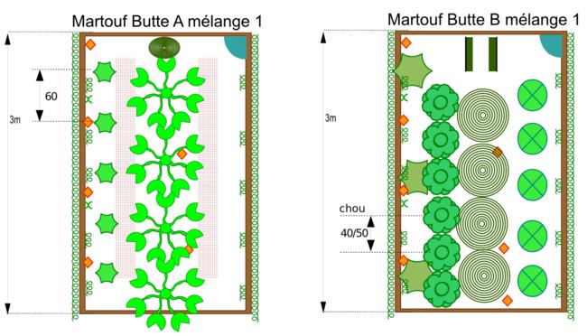 jardin plantations sur buttes 2012.png