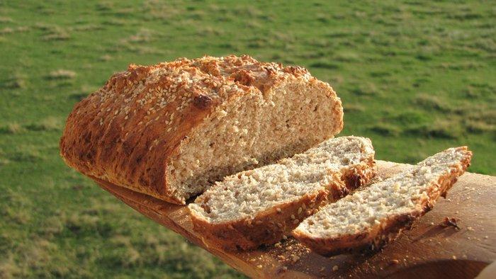 pain d epautre faible en gluten fait avec de la farine agriculture féérique Comtesse.JPG