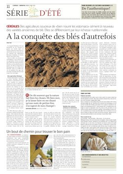 Blés anciens_article LExpress