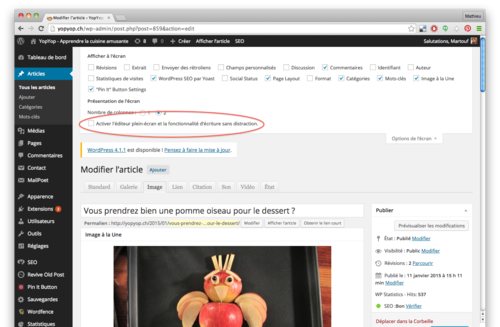 wordpress désactiver les ascenseurs du mode sans distraction wp 4.png
