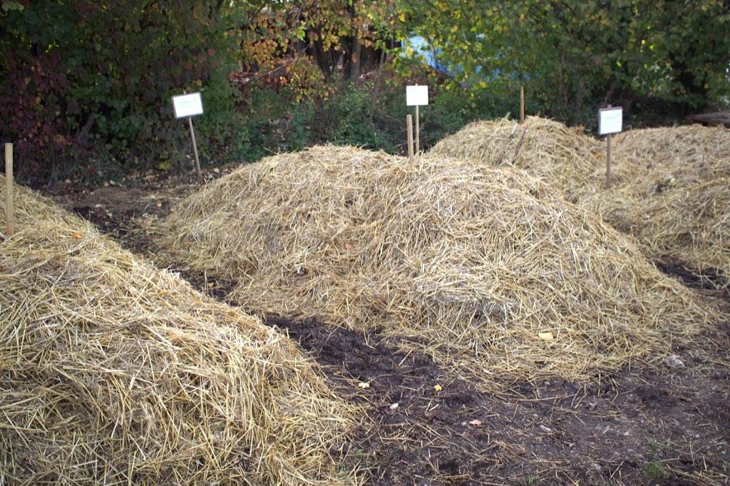 compost biodynamie