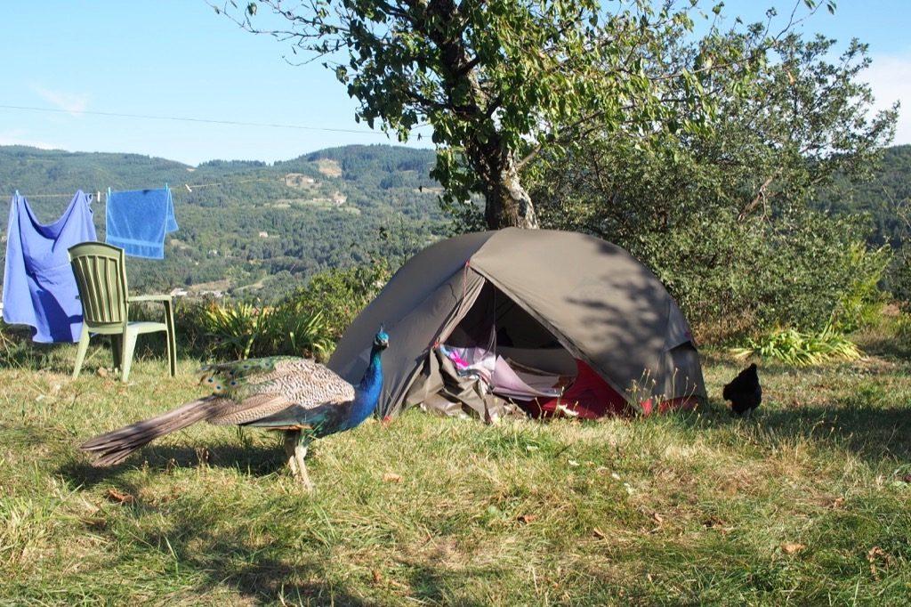 camping paon