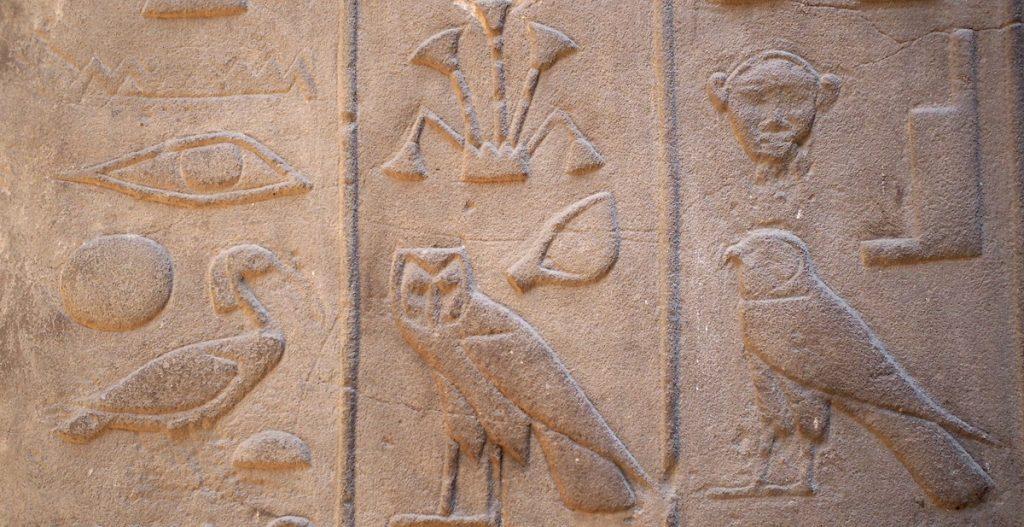 decodage de la langue des oiseaux hieroglyphe