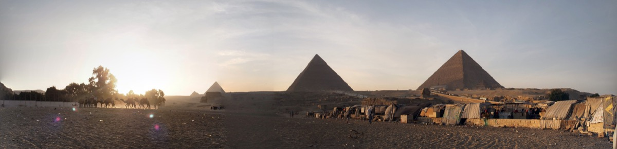 pyramide gizeh panorama dromadaire