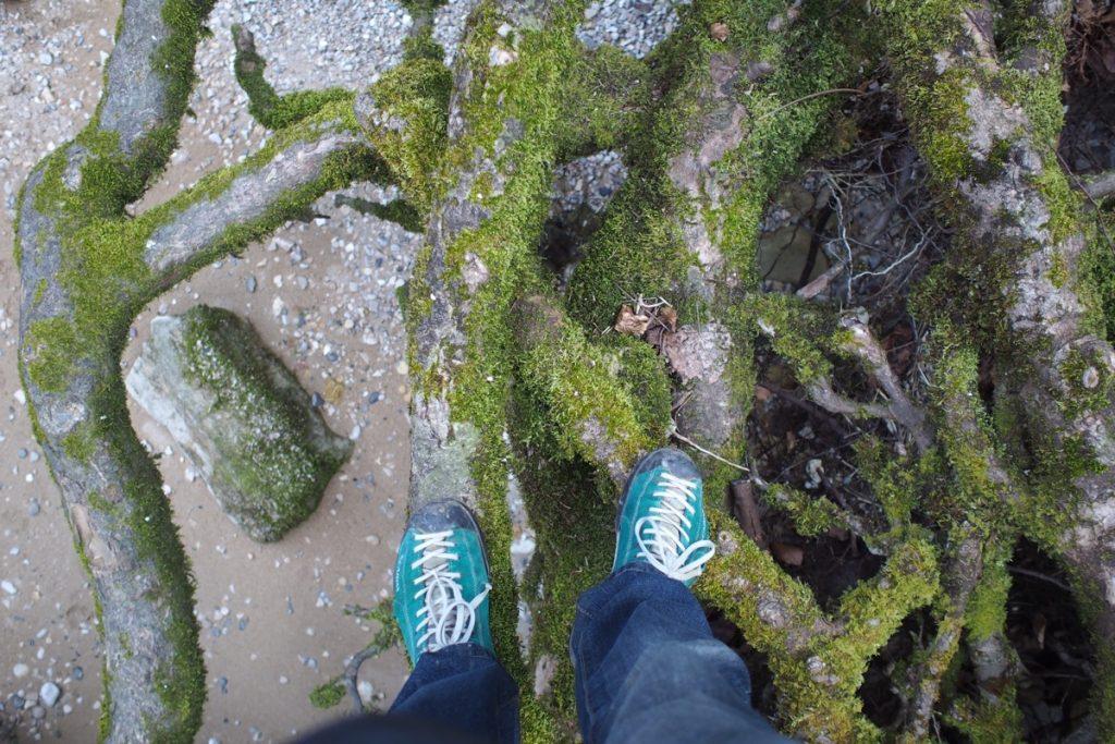 pieds de Martouf racine gorges areuse