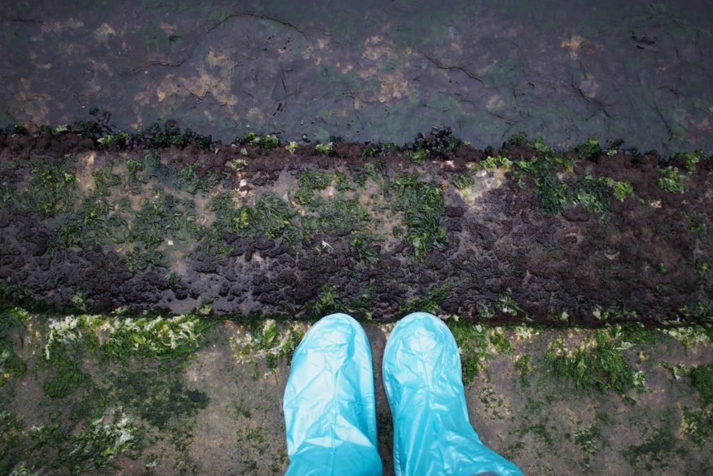 pieds de Martouf venise botte jetable