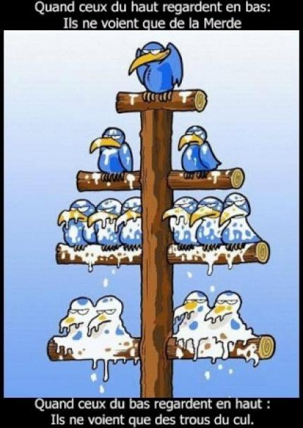 La-hierarchie-pouvoir-trou-du-cul-merde-oiseaux