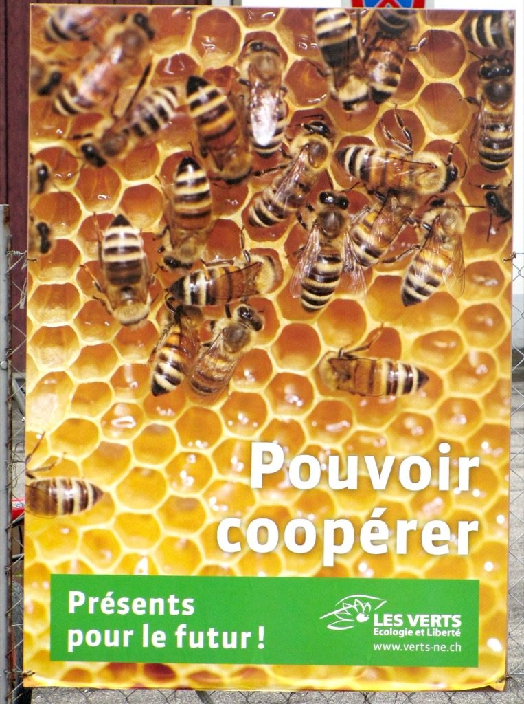 affiche-pouvoir-coopérer-abeille