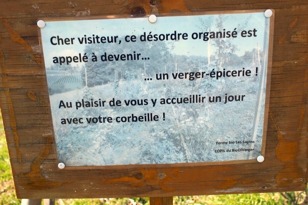 verger-epicerie-morges-copil-du-bio-diverger