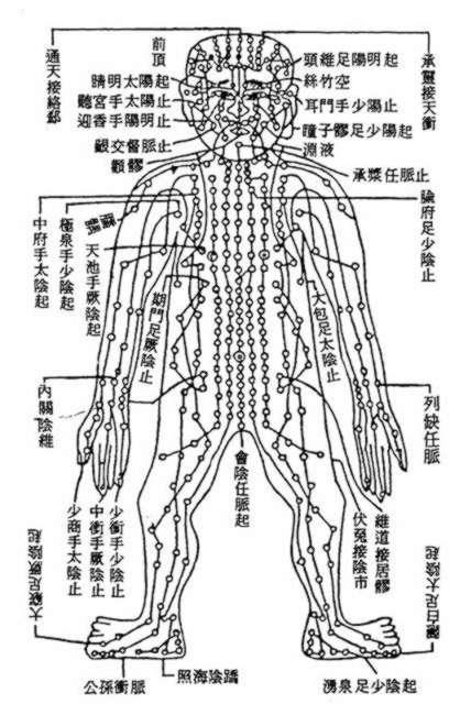 méridien acupuncture Yangren_jingtu1