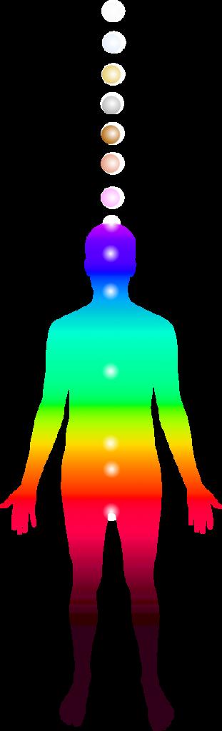 7-chakras-corporels-extra-corporels-transcendantaux-face Life vibration analyser LVA
